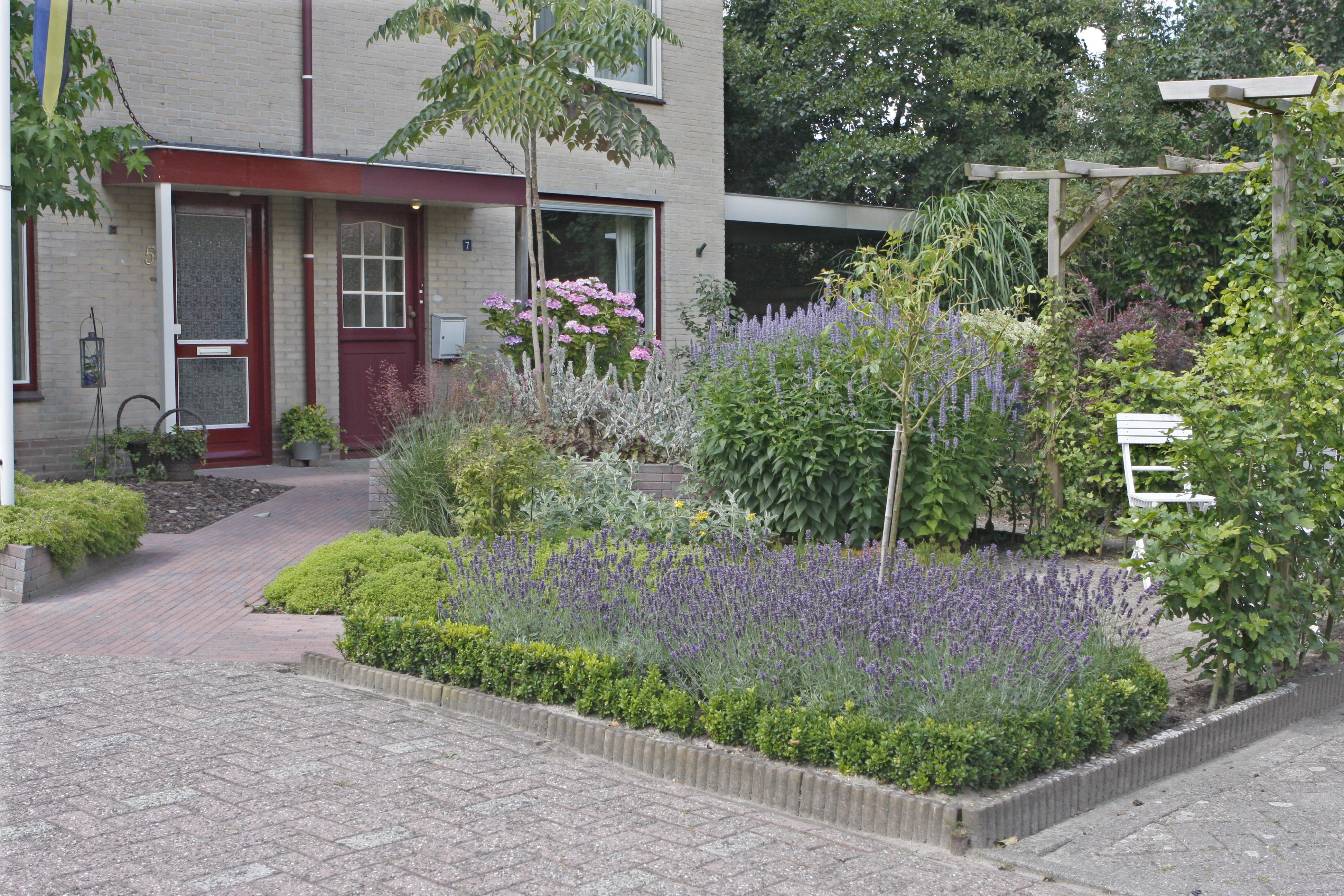 voorbeeld bloeiende voortuin tuin natuurlijk
